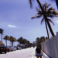 stephanie_dwyer