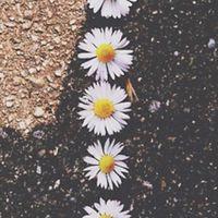 christi_white